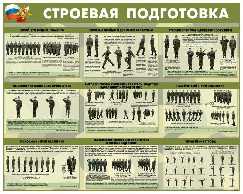 stroevaya_125_100